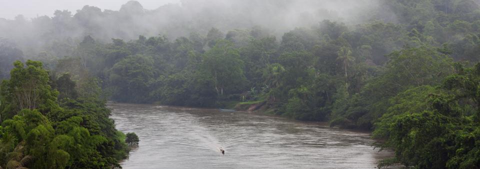 rio-cayapas